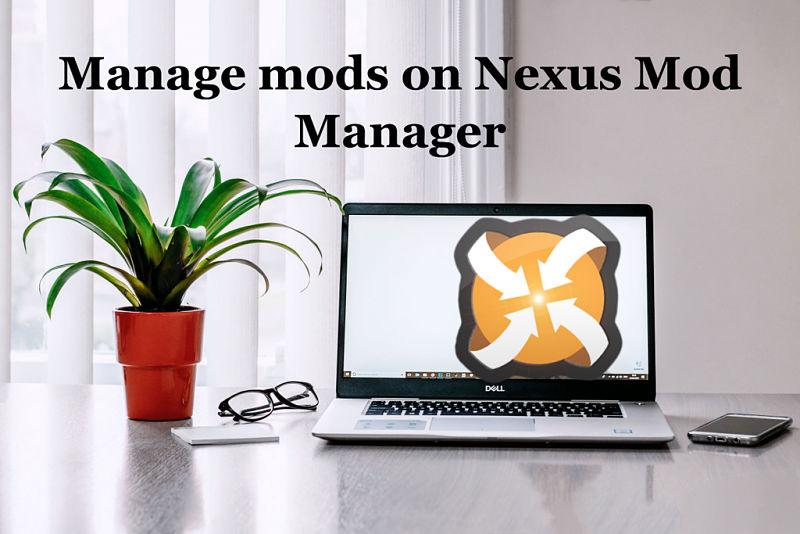 Nexus Mod Manager