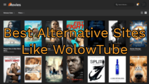Best Alternative Sites Like WolowTube 2019 (Updated List)